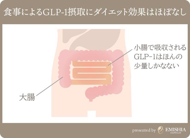 食事からGLP-1の効果は期待できない