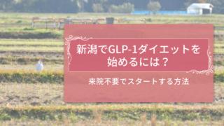 新潟でGLP-1ダイエットを受ける方法