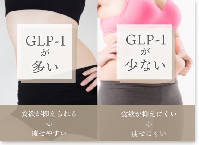 痩せる理由はGLP-1の分泌量にある