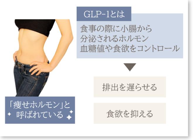 GLP-1について枠付き